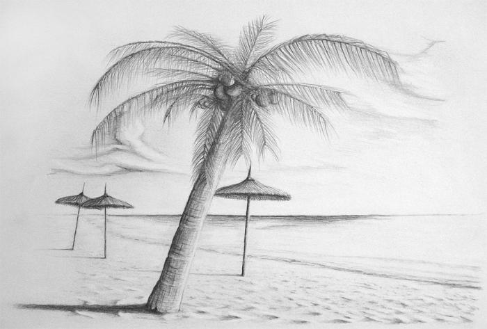 ideen zum zeichnen, meer und strand, große palme mit kokosnüssen, sonnenschnirme