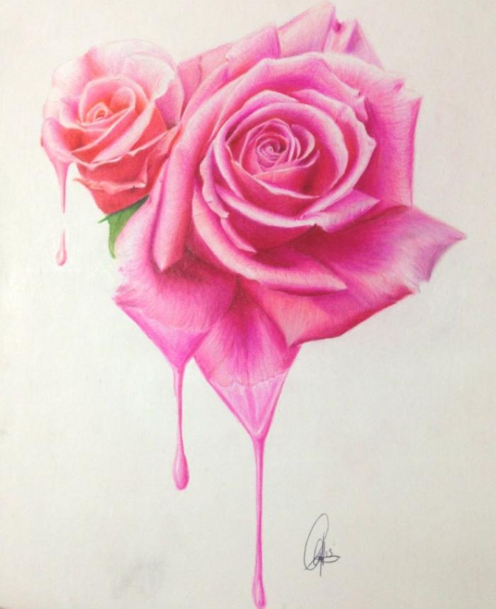 zwei rosen, rosa blumen, ideen zum zeichnen, farbige zeichung, wie zeichnet man blüten