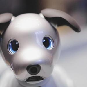 Der kleine Robo-Hund Aibo kehrt zurück