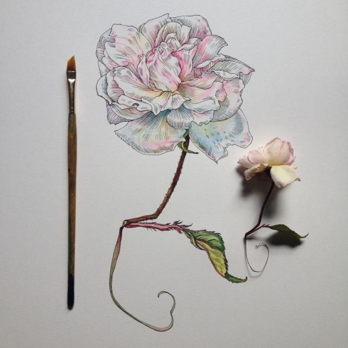malen lernen, wie zeichnet man blumen, dünner pinsel, weiße rose, wassefarben