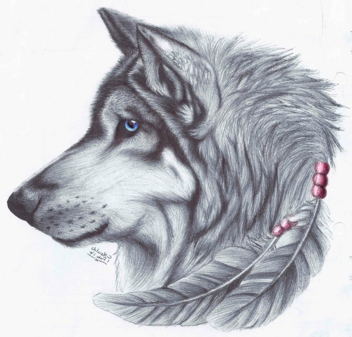 wolf mit blauen augen, große feder mit roden perlen, motive zum zeichnen