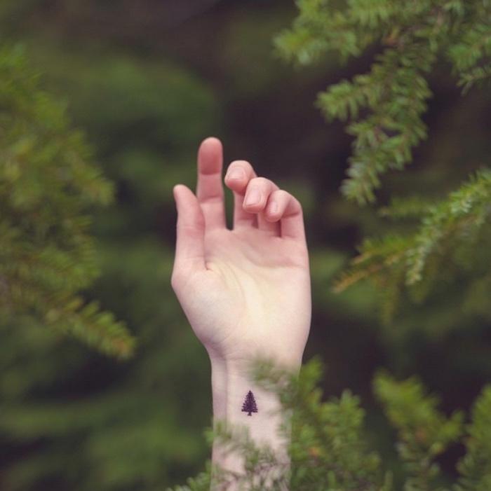 tattoo vorlage, ein foto im wald, kleines bäumchen auf der hand tätowieren, wald lieben
