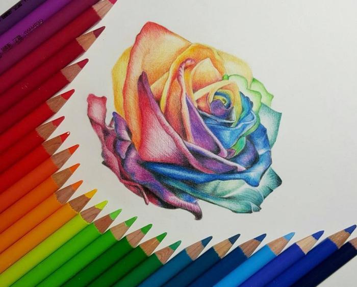 zeichnen lernen, rose in den farben des regenbogens, bunte farbstifte, blume
