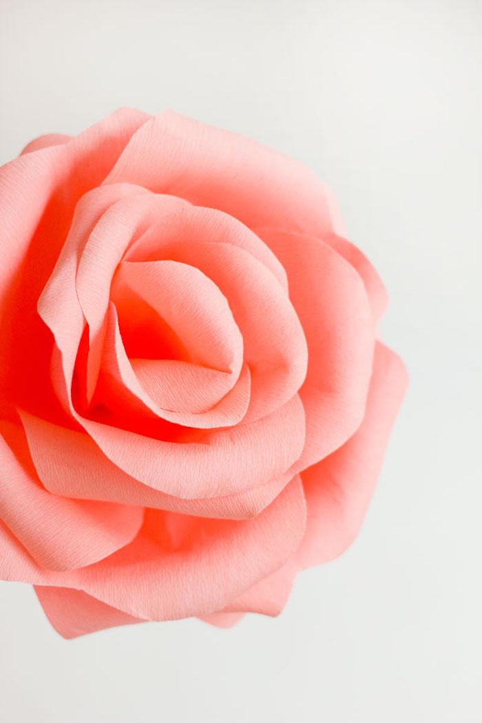 Rosenblüte aus Krepppapier selber machen, riesige rosarote Rose, Bastelideen mit Papier für Kinder und Erwachsene