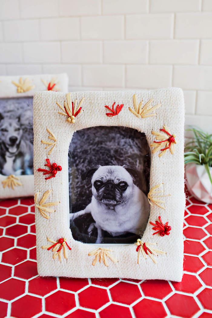 DIY Bilderrahmen mit weißem Stoff, Blumen aus Faden, Hund auf dem Foto, grüne Zimmerpflanze in Blumentopf