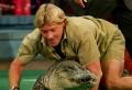 Neues Google-Doodle für den Krokodiljäger Steve Irwin
