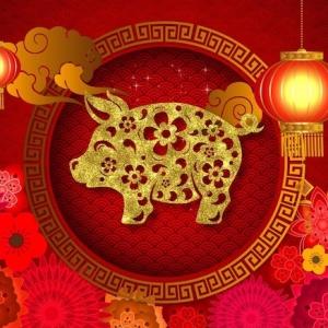 Willkommen im Jahr des Schweins