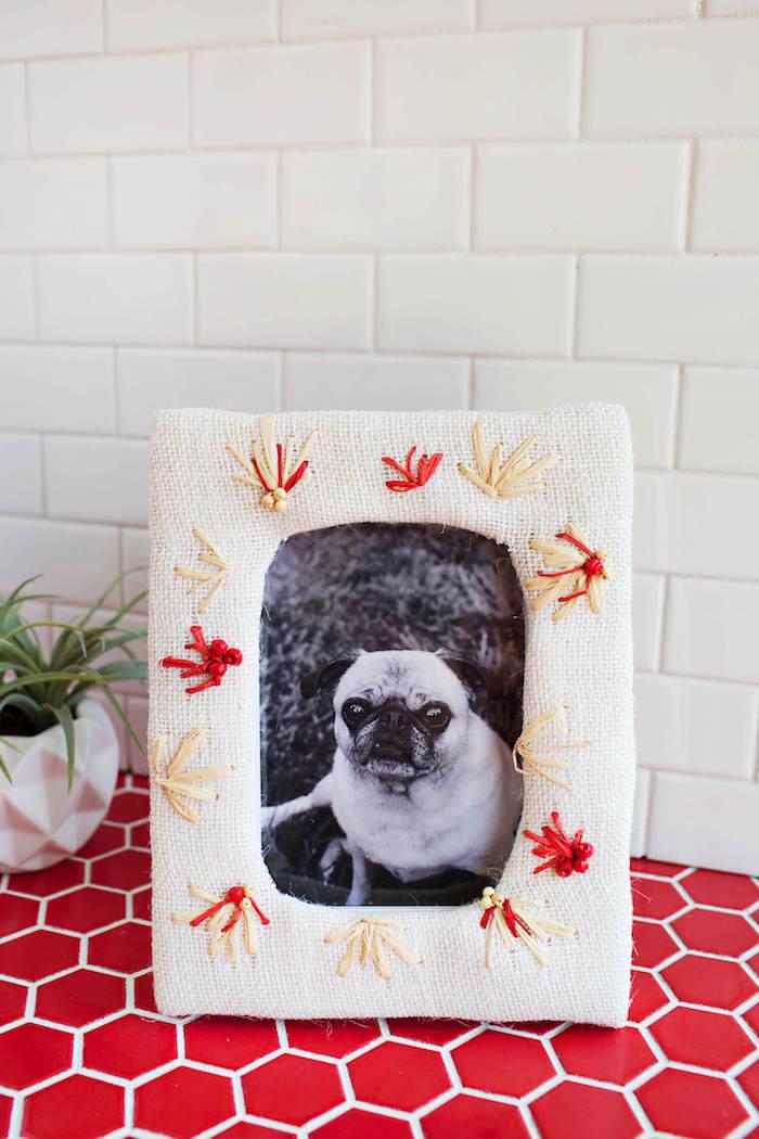 Bilderrahmen selber machen, mit Blumen aus Faden, süßer Hund auf dem Foto, grüne Zimmerpflanze in weißem Blumentopf