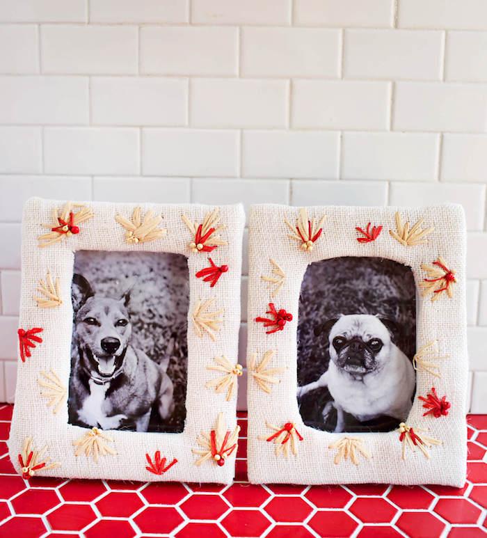 Bilderrahmen selber machen und dekorieren, zwei süße Hunde auf den Bildern