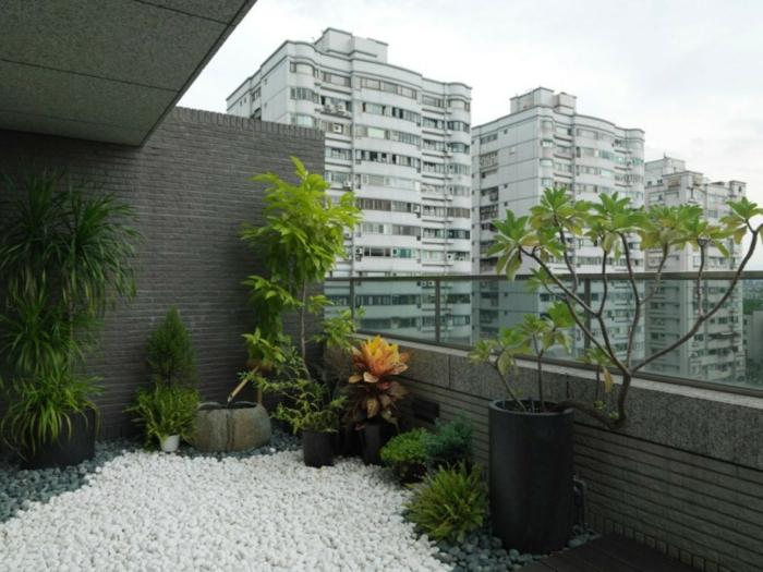 ein Garten auf Hochhaus, grüne Pflanzen und Kies Steine, kleine Bäume, Gartengestaltung Ideen