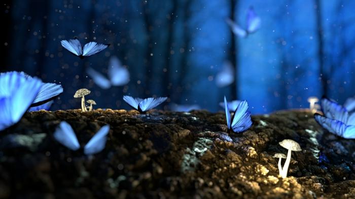 coole Bilder, kleine Schmetterlinge mit blauen Flügeln, brauner Boden und kleine Pilze, ein magisches Bild