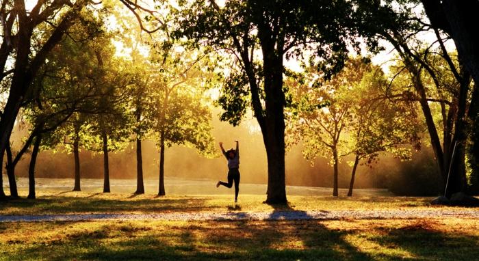 viele Bäume, ein Mädchen joggt beim Sonnenaufgang, schöne Profilbilder im Herbst, ein Pfad