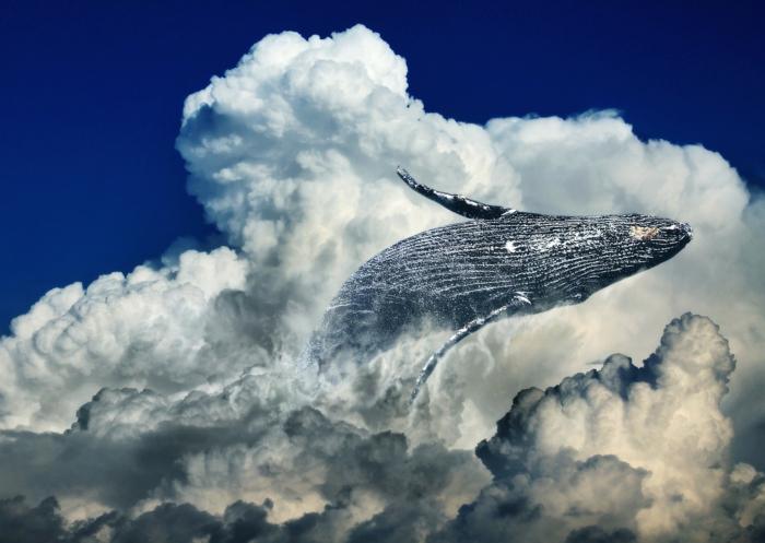 ein blauer Himmel mit weißen Wolken, ein Wal, der im Himmel schwimmt, Kunst Bilder