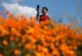 #Superbloom: Wegen Instagram-Tourismus muss Walker Canyon schließen