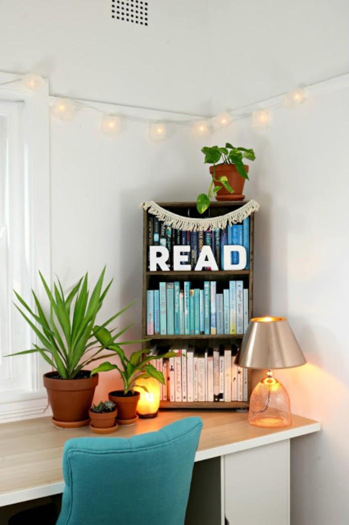 Gartenhaus Flachdach, Leseraum für Kenner, Bücherregale, Pflanzen auf dem Schreibtisch
