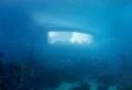 """""""UNDER"""" – Europas erstes Unterwasser-Restaurant eröffnet"""