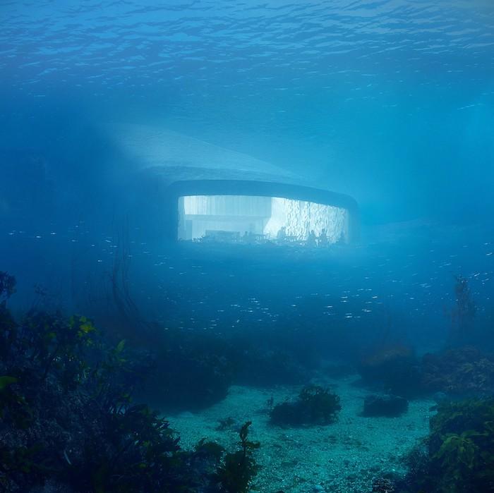 blaues wasser, meer mit vielen kleinen blauen fischen, ein unterwasse-restaurant mit einem großen panoramafenster, tische und stühle und menschen