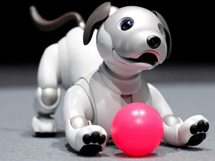 ein weißer Hund mit rosa Ball, Roboter Hund mit schwarzen Pfoten und blaue Augen