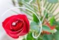 Verlobungsringe 2019: Das wird dieses Jahr angesagt!