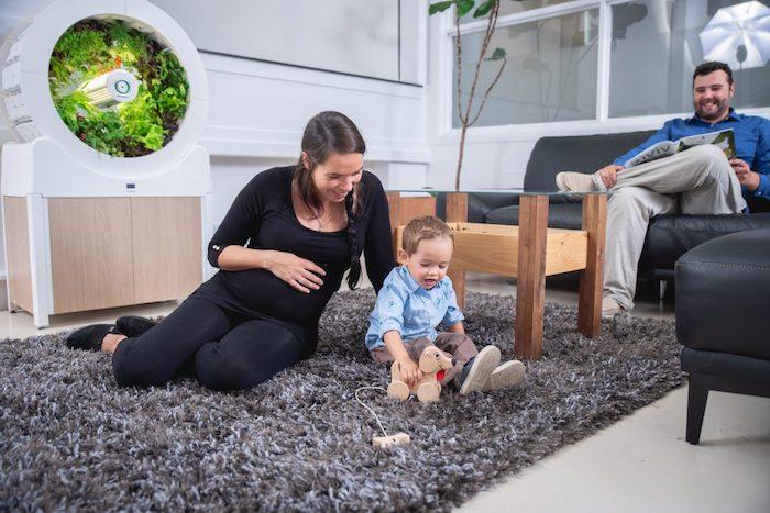 ein wohnzimmer mit einem tisch aus holz und einem grauen teppicg, ein Ogarden Smart indoor-garden mit grünen pflanzen