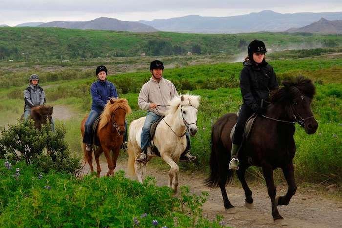 geschenk für besten freund, pferde rennen, vier personen auf vier pferde in verschiedenen farben, wandern in den bergen