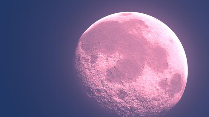 großer pinker vollmond und ein blauer himmel, der pink moon