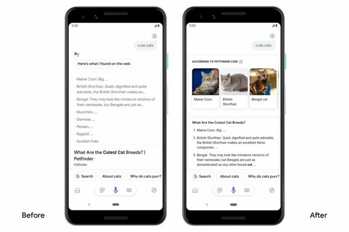 wie sieht die Suchmaschine vor und nach dem Update, Google Assistant mit Fotos