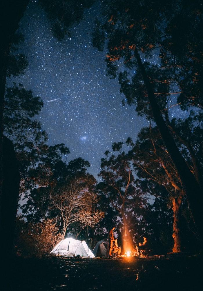 tumblr hintergrundbilder, himmel bild oben über den wald, viele sterne am himmel