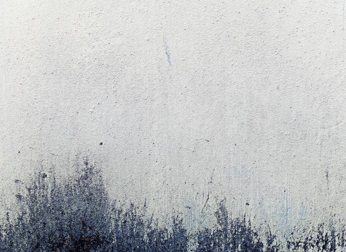 reddit tumblr, grunge bild idee, weiß und dunkelblau gestaltung als gras