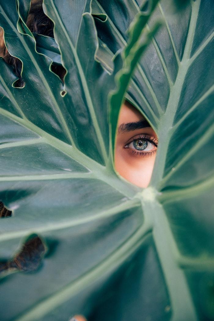 tumblr wallpaper quotes und design ideen zum faszinieren und eintlehnen, eine auge sieht dich an durch die pflanzen