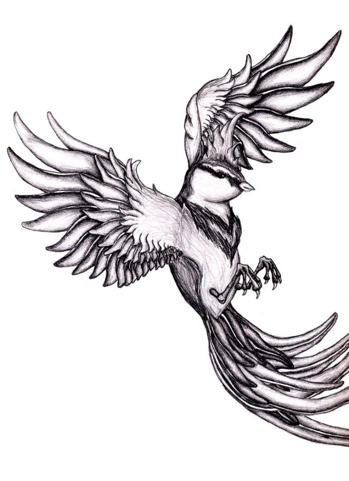 bilder zum nachzeichnen, fliegender vogel, tattoo vorlagen ideen, realitische zeichnung in schwarz und grau