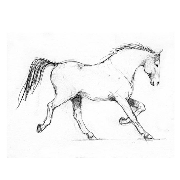 coole bilder zum nachzeichnen, renennder pferd zeichnen, zeichnung in schwarz und grau
