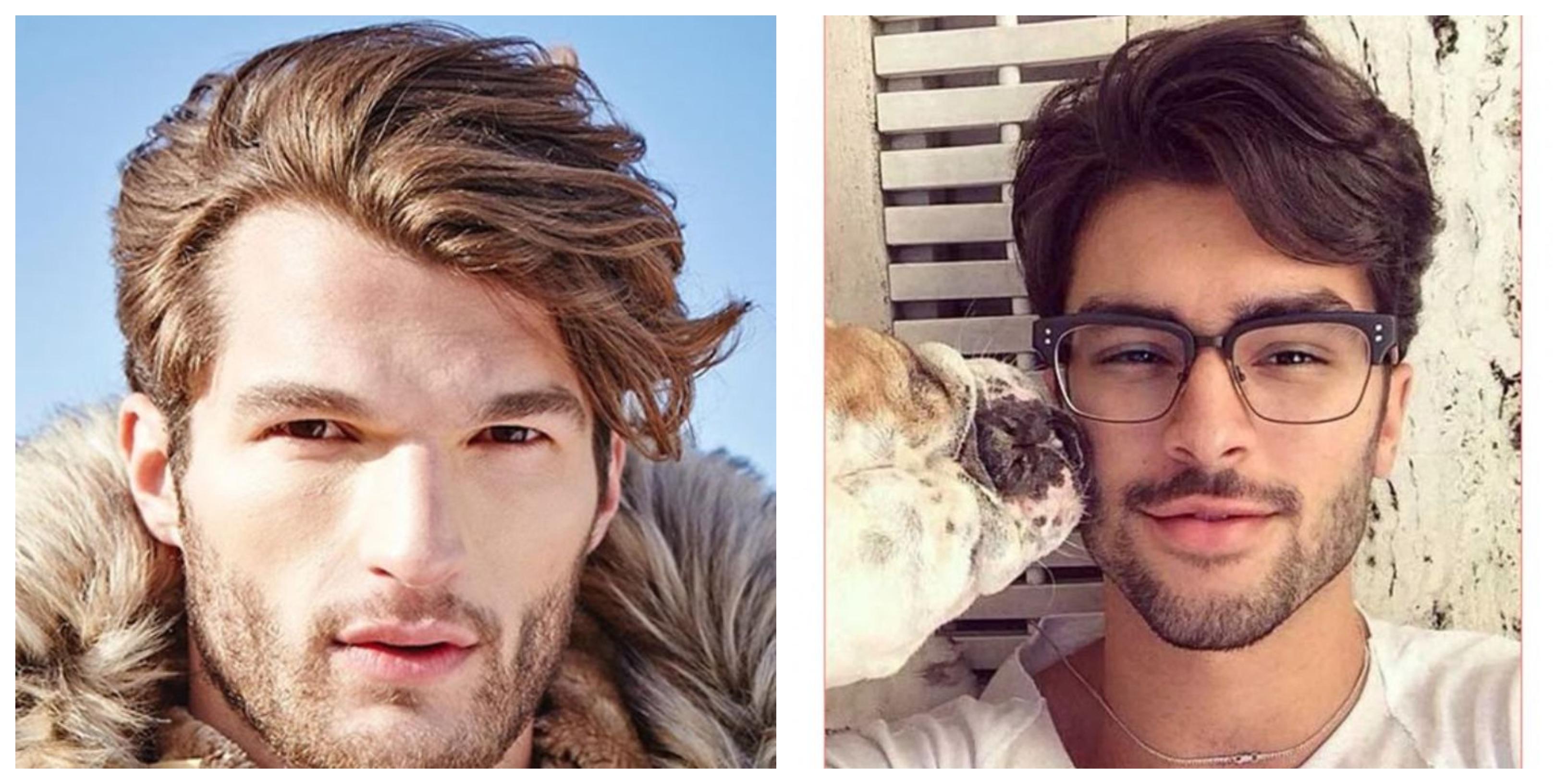 frisuren für männer mittellang für blonden oder dunkelhaarigen männern, ein hund