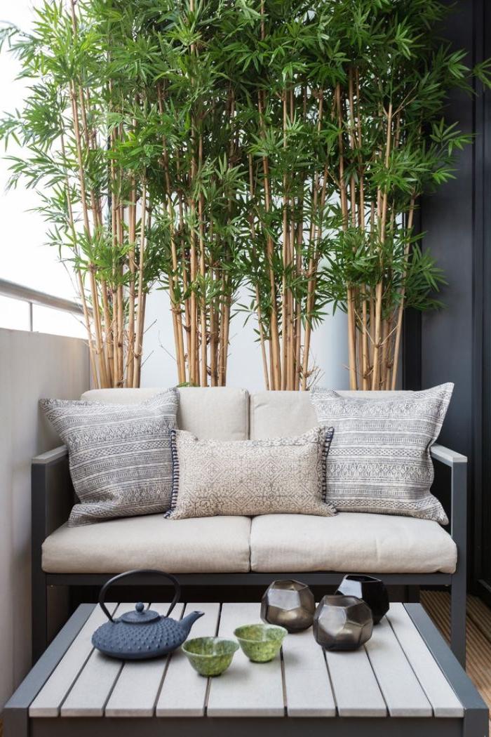 balkongestaltung, eine moderne und dezente deko idee, bamboo pflanzen groß