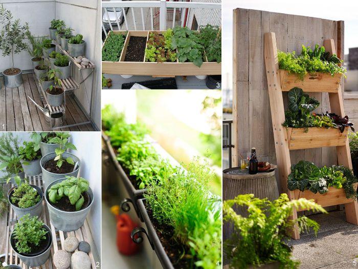 balkon einrichten, grüne balkon deko ideen und gestaltung, collage foto, kräuter und gewürze auf dem balkon pflanzen