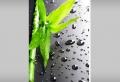 Forex – ein wasserbeständiges Plattenmaterial für Ihre Bilder für Innen- und Außenbereich
