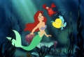 Halle Bailey spielt Arielle, die Meerjungfrau in dem neuen Remake von Disney