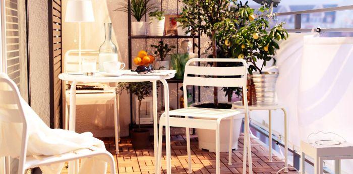 obi terrassenplaner, dezente terrassenfarben, terrasse dekorieren, eine pflanze, orangenbaum