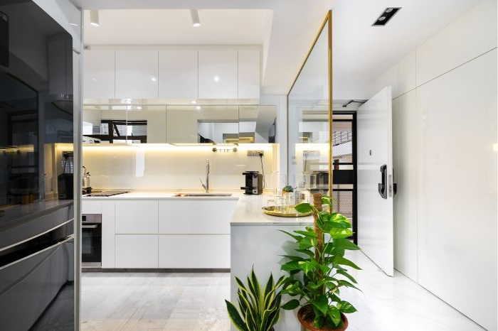 minimalismus lebensstil, zwei grüne pflanzen, weiße raumgestaltung, schwarzer kühlschrank