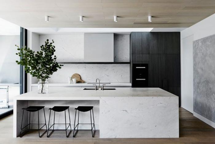 minimalismus lebensstil, weiße kochinsel, schwarze stühle, kühlschrank, pflanze