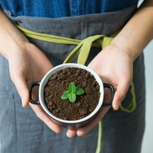 Heilung mit der Kraft der Natur: 5 wirksame Naturheilmittel