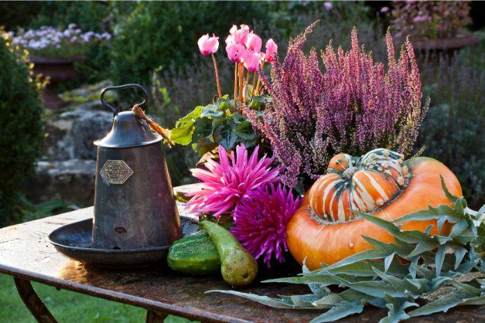 balkon verschönern, lila blumen, kürbis dekor, eine graue lampendeko, pflanzen für balkon, lavendel