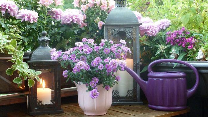 möbel für kleinen balkon, lila kleine details, elemente am balkon, blumen, kerze, lampe