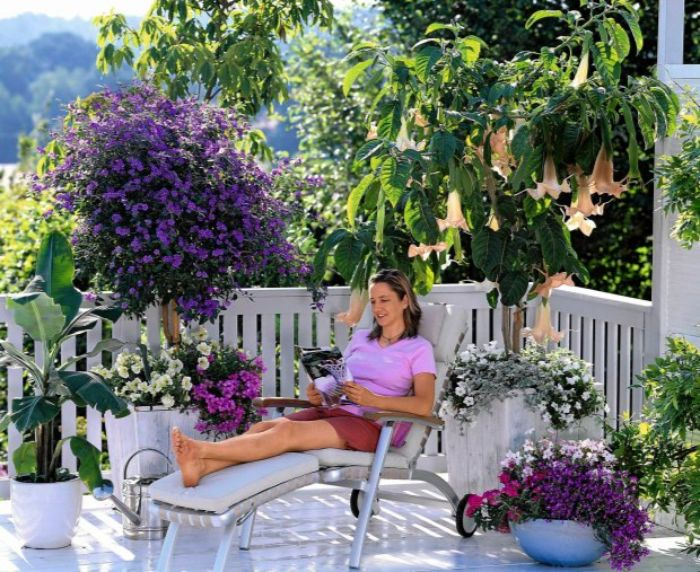 schöne balkone zum genießen selber dekorieren, eine frau in lila kleidung hat den balkon in ihrer lieblingsfarbe gestaltet undchillt