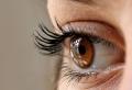 Zu kurze Wimpern? Wie ein Wimpernserum helfen kann