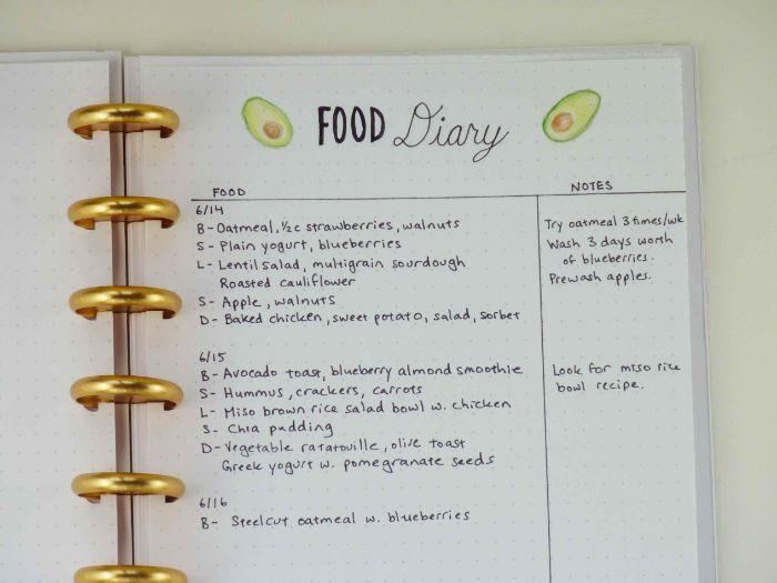 bullet journal ideen für die alltägliche essgewohnheiten, essroutine, kleine zeichnungen von avocados
