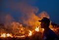 Leonardo DiCaprio spendet 5 Millionen Dollar für Kampf gegen die Regenwald-Brände im Amazonasgebiet