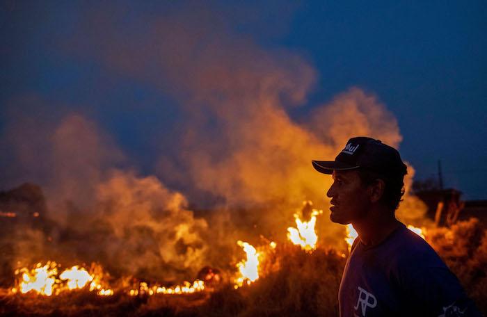 ein brennender wald mit vielen pflanzen, brände im amazonas regenwald in brasilien, ein junger mann mit blauer mütze