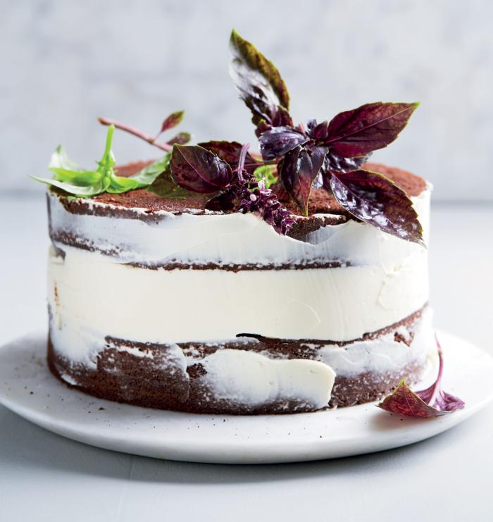 cake mit schokoladenboden und kakao, schoko mascarpone torte, geburtstagskuchen backen