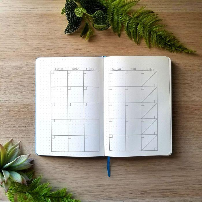 bullet journal ideen januar, kalender heft aufteilen, zwei grüne pflanzen, dekor ideen